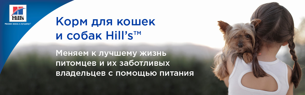 Hills head banner