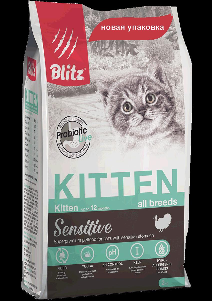 Blitz kitten, 10 кг