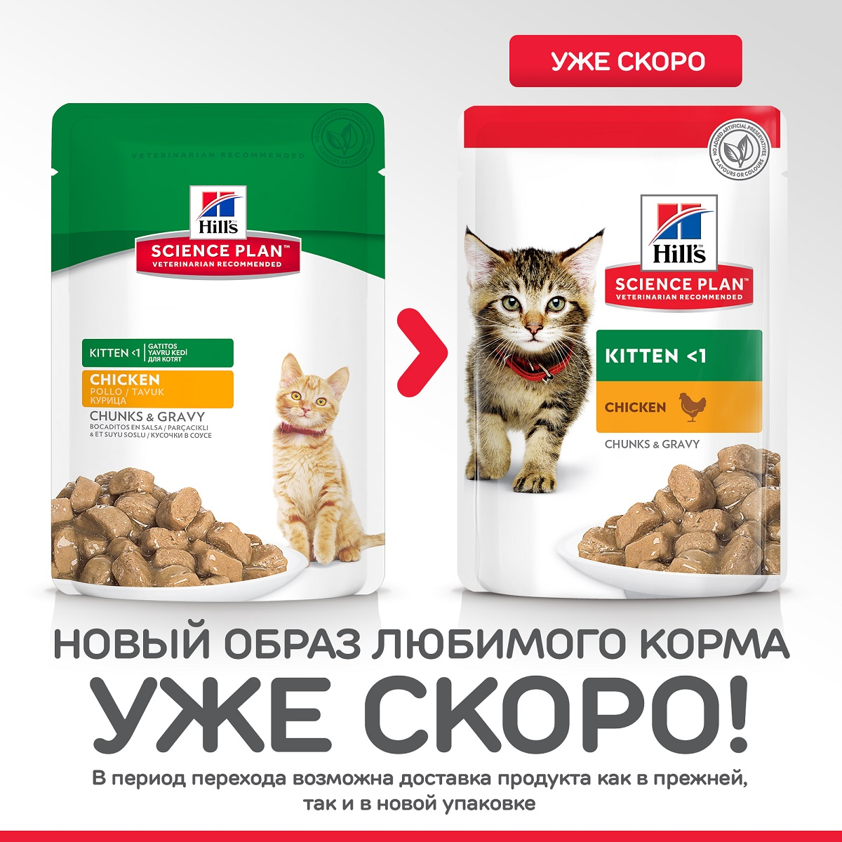 Hill's Science Plan Healthy Development Kitten Курица 85гр 60575