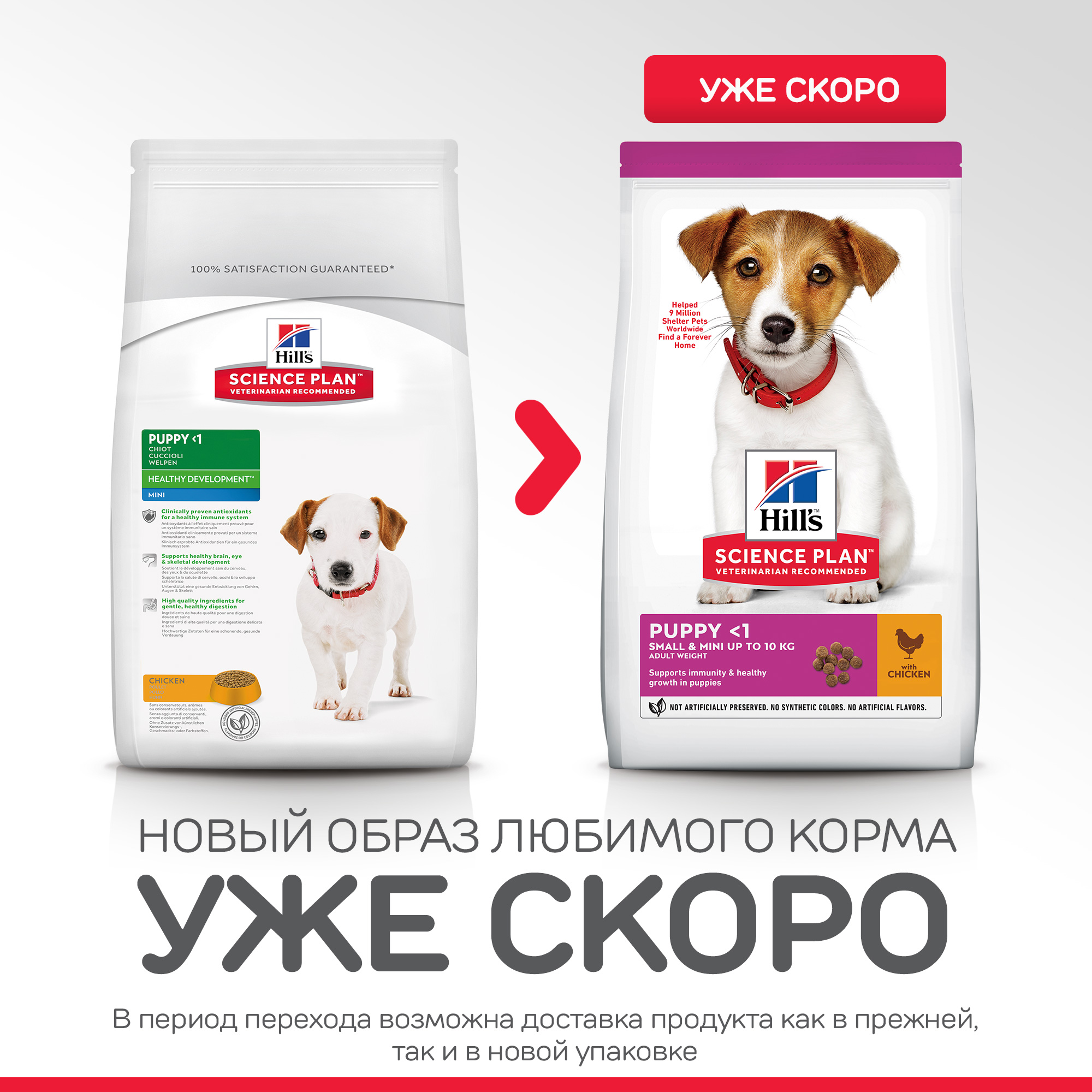 166SP Canine Puppy Mini Chicken 3 кг 70251