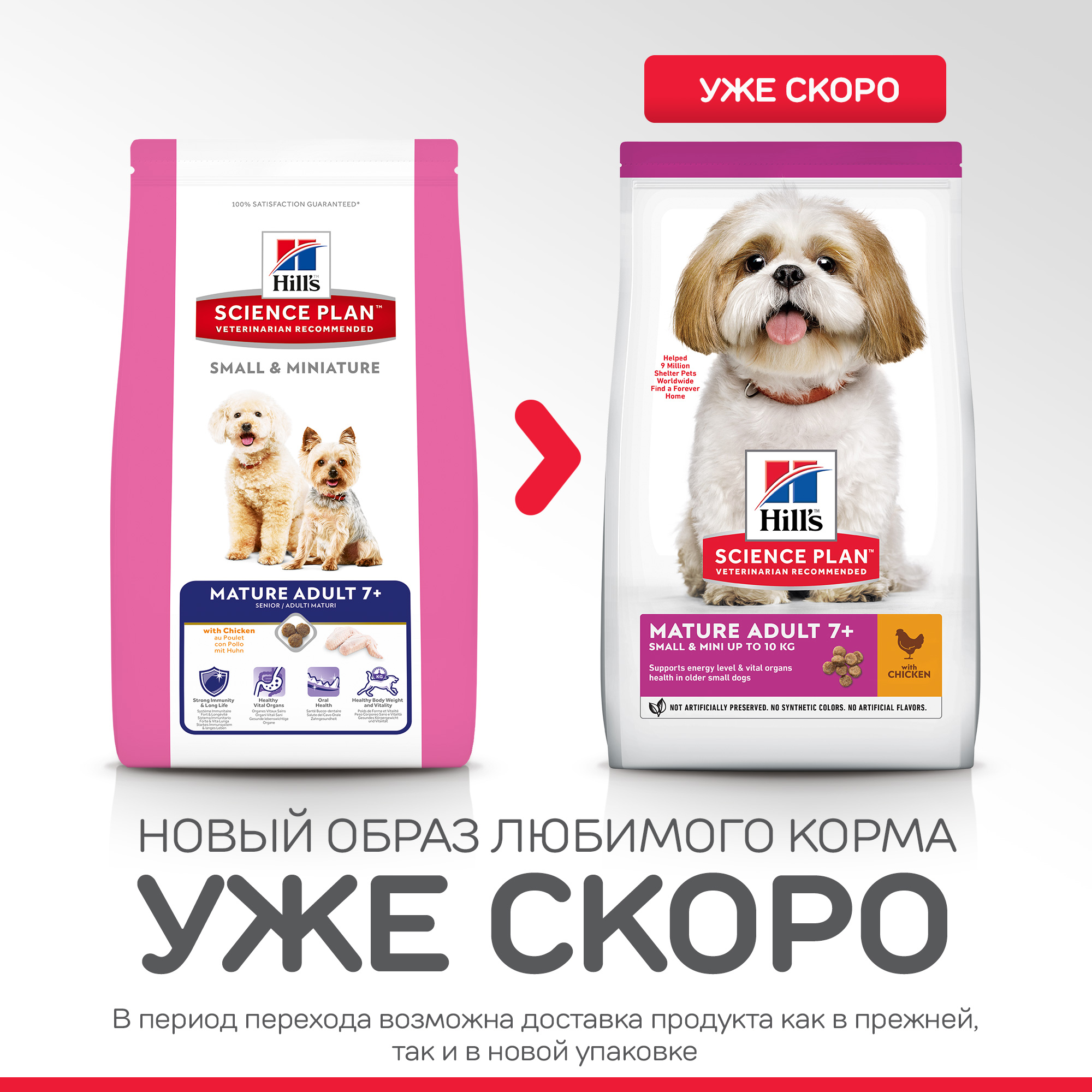 SP Canine Mature Adult 7+ Small & Miniature 1,5 кг 70452