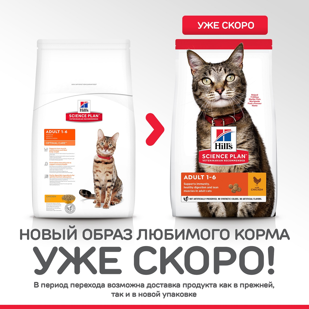 29Hill's Science Plan Optimal Care Курица 300 гр 50782