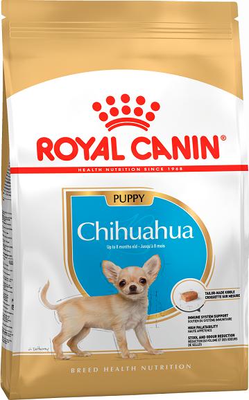 CHIHUAHUA JUNIOR 0,5 кг