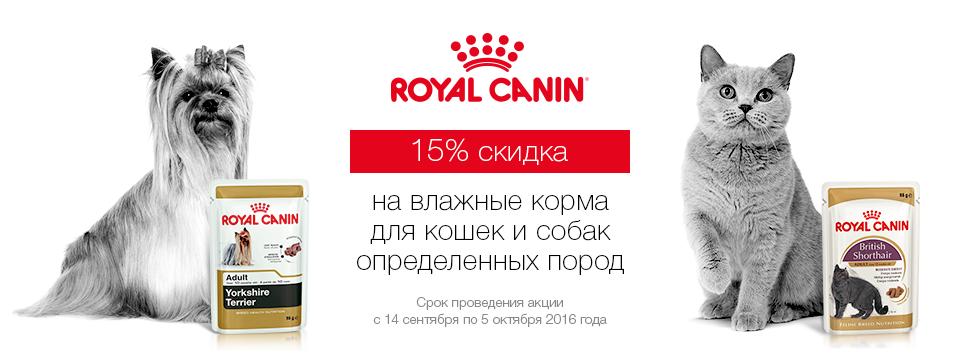 RC породные паучи -15%