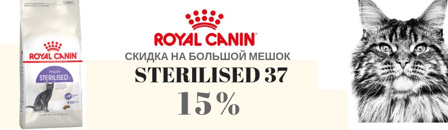 RC STRILISED %